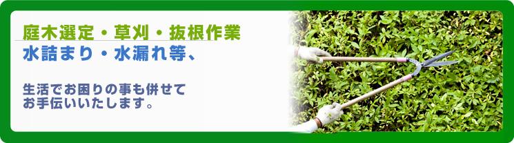 庭木選定・草刈・抜根作業・水詰まり・水漏れ等、生活でお困りの事も併せてお手伝いいたします。